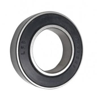 Chik/NSK/SKF/NTN/Koyo/ /Timken Brand N2305~N2312 Model Cylindrical Roller Bearings for Sale