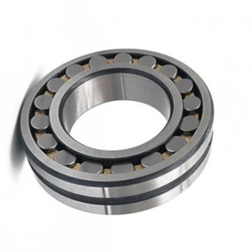 German quality full complement roller bearing NNF5014 SL04 5014