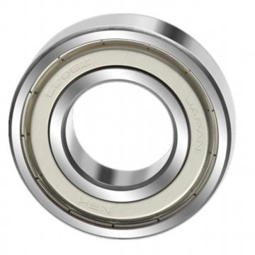 SL04 5014 PP Double Row Size 70x110x54 mm Full Complement Cylindrical Roller Bearing SL045014PP