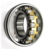 Zv2 6201 6202 6203 6204 6205 6206 Zz 2RS Deep Groove Ball Bearing for Electric Motor